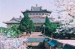 Wuhan University old
