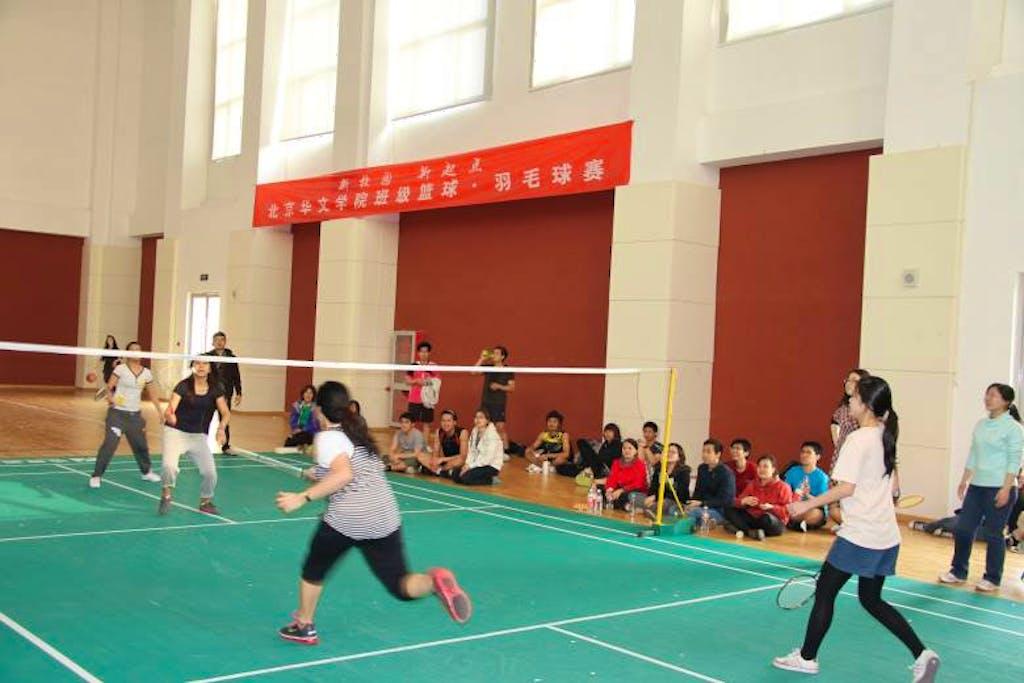blcc sports 8