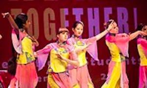 Ningbo University Arts