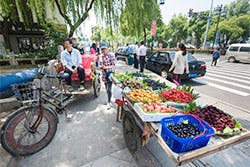 Suzhou fruit stand